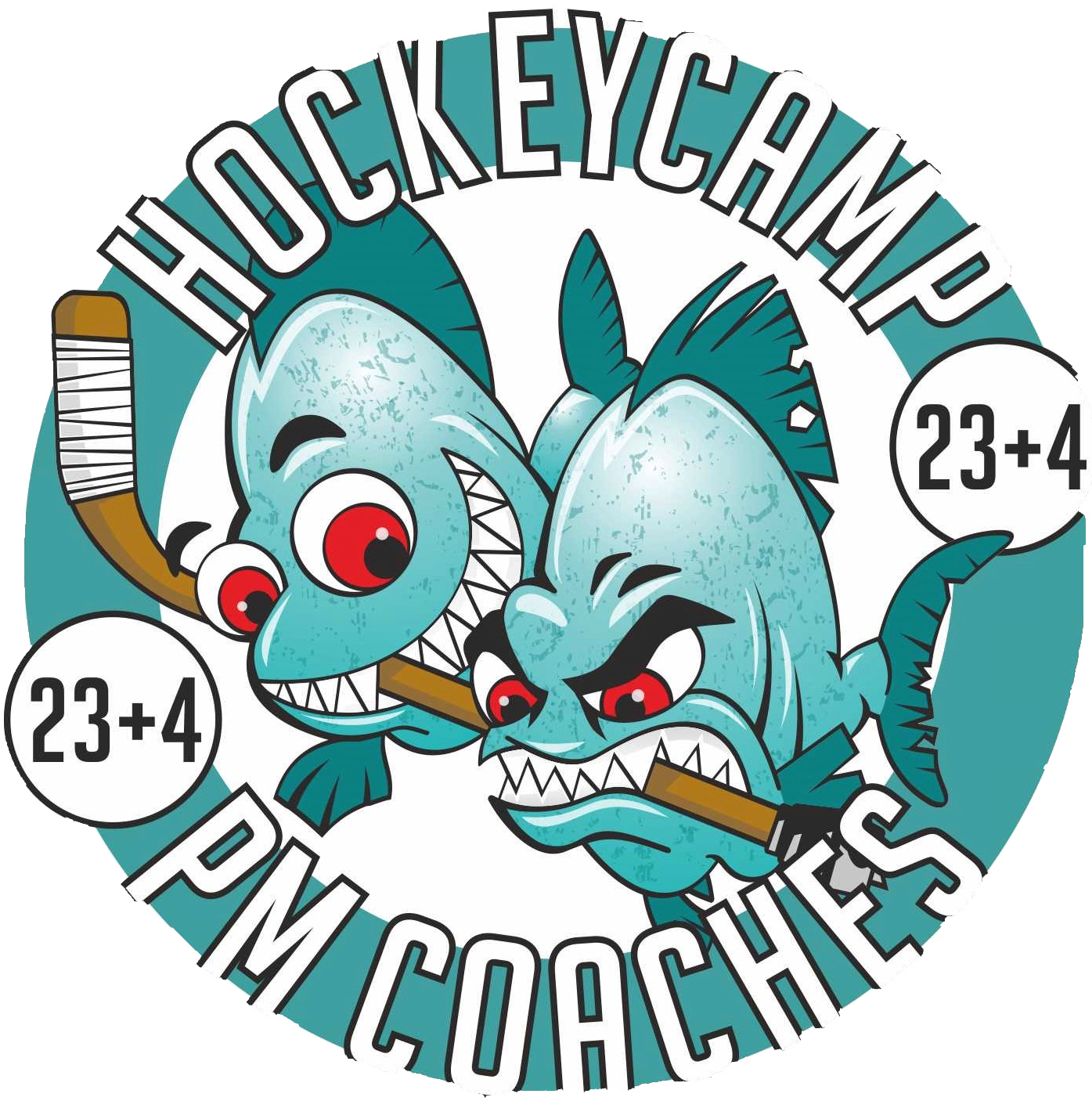 Killahockey Eishockey Camps - PM Eishockey Coaches